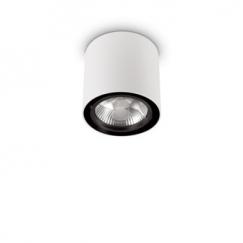Потолочные светильники TECNICO